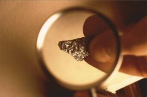 Un frammento del dottor Wolf (Foto Pietro Ponzo).