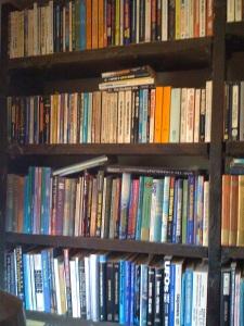 Alcuni scaffali dell'ampia biblioteca. (Foto: Maurizio Baiata)