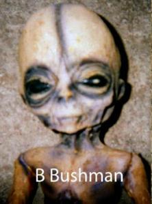 Bushman alien